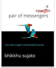 A Swift pair of messengers