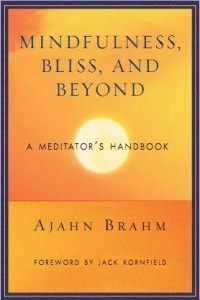 Mindfulness, Bliss and Beyond - A meditators handbook