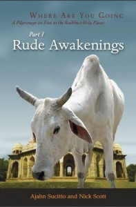 Rude Awakenings PDF Ebook
