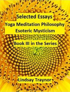 Selected Essays by Lindsay Traynor PDF