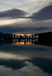 The Mirror of Insight book PDF